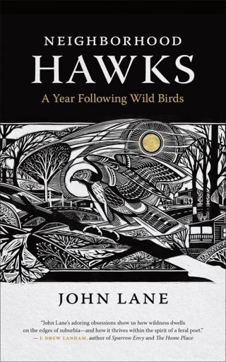 John Lane and David Hale: Neighborhood Hawks