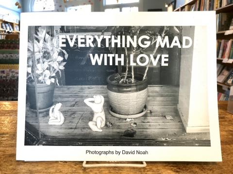 EVERYTHING MAD WITH LOVE by David Noah